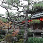 momo's Aroma room 京都のリンパマッサージ & 子連れで行けるアロマサロン-上七軒歌舞練場でコンサート❤︎